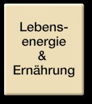 E_Lebensenergie und Ernaehrung